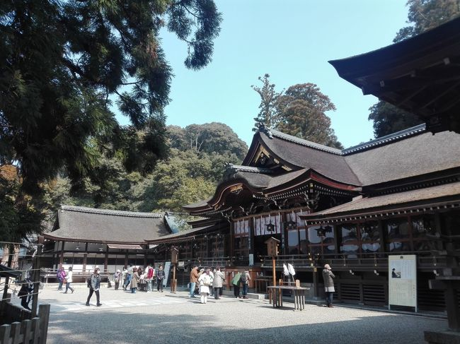 ずっと気になっていた奈良県に行ってきました。<br /><br />東京から新幹線だと、京都駅で降りて電車で一時間で、確かにちょっと行きづらいなあとは思いますが、京都より空いていて、歴史がより古めなのが良かった。<br /><br />宝物殿の仏像とかは京都と同じような歴史ある国宝が見れるし、結構楽しめました。京都に負けず頑張っていただきたい。(誰目線)<br /><br />奈良県に来たのは高校生の時に古墳巡りをして以来だった。<br />桜の時期や紅葉の時期にも来てみたいな?<br /><br /><br /><br />I visited Nara Prefecture, which I have been concerned about for a long time.<br /><br />In an hour by train from Kyoto Station. I think that is hard a little to go,  but, there is no crowd and history was good and more older.<br /><br />you can watch Buddha statue, a national treasure with a similar history of Kyoto.  I hope that Nara will not lose to Kyoto. <br /><br />Nara Prefecture, was since the ancient tomb tour in high school.<br />I also want to go to the timing and foliage season of cherry blossoms -