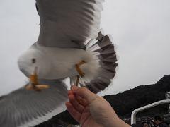 海の京都でカモメにエサを与える