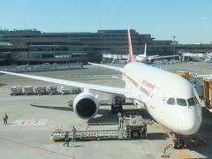 エア・インディア AI307 に乗ってインドへ出発&それまでにした準備。