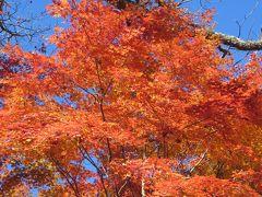2015秋、信州の紅葉とワイナリー巡り(2/3)11月4日(2):塩尻から自家用車で紅葉巡り