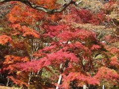 2015秋、信州の紅葉とワイナリー巡り(3/3)11月4日(3):塩尻から自家用車で紅葉巡り
