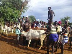 エチオピア ハマル族のブルジャンピング