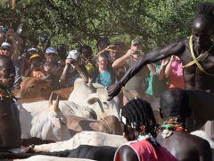 ハマル族、成人になる為に牛飛びの儀式