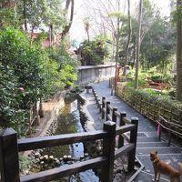 2016年3月8日:お鷹の道&武蔵国分寺公園 〜野川の源流を求めて〜
