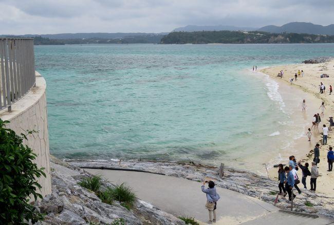 慶良間諸島でのホエールウォッチングの後、沖縄本島を北上し、古宇利島に向かいました。橋で渡ることができる、エメラルドグリーンの海の色が綺麗な島でした。