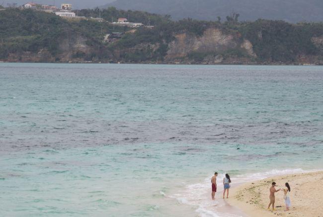 沖縄で一番美しいビーチともいわれる、古宇利島の浜辺の紹介の続きです。そのビーチを散策の後、沖縄美ら海(ちゅらうみ)水族館に向かいました。