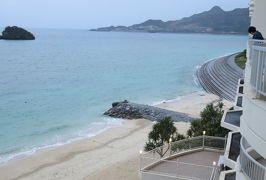 2016春、沖縄旅行(14):3月18日(12):海洋博公園から名護市へ、魚のモニュメント、イソヒヨドリ、名護で泊まったホテル