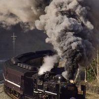 """蒸気機関車C57-1号機""""傘寿""""おめでとう!SLやまぐち号に乗って"""