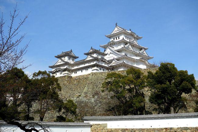 私が一人でスリランカ旅行中、一人で日本でお留守番の相棒。<br />どこかへ連れて行けと連日うるさい、うるさい。<br />歴史好きの相棒にチラッと姫路城は?って持ち出すと、<br />自分でネットで調べて「行きたい、行きたい!」と、私以上に興味を示した。<br />大阪から遠出するのに姫路城だけだとチョッと物足りないと思い、<br />温泉好きの相棒のため、プラス赤穂温泉。<br />晩ご飯は?って聞いてみると、肉食獣の相棒は「Kobe beef」を連呼。<br />太っ腹の相棒が「お金の事は心配するな!」って言ったんで、<br />行く気のなかった貧乏性の私が前日に旅程を組んで行ってきました。<br />参考になるような旅行記ではないんですが、自分たちの思い出として。<br /><br /><br />大阪→姫路城→赤穂温泉→神戸元町→大阪<br />