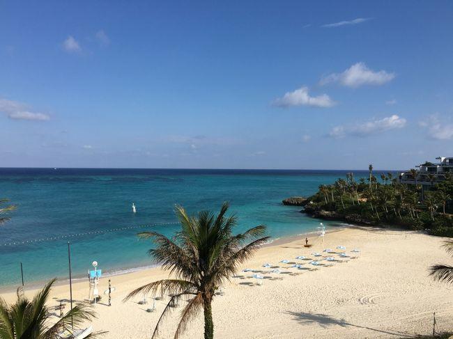 予定には無かったのですが仕事関係で1月に続き沖縄に行ってきました。<br />土曜の昼出発で1泊、用事がメインであまりゆっくりはできませんでしたが大好きな沖縄なので楽しかったです