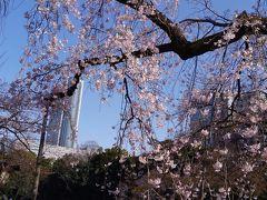 庭園巡りとシェラトン都東京のおやすみ小旅行