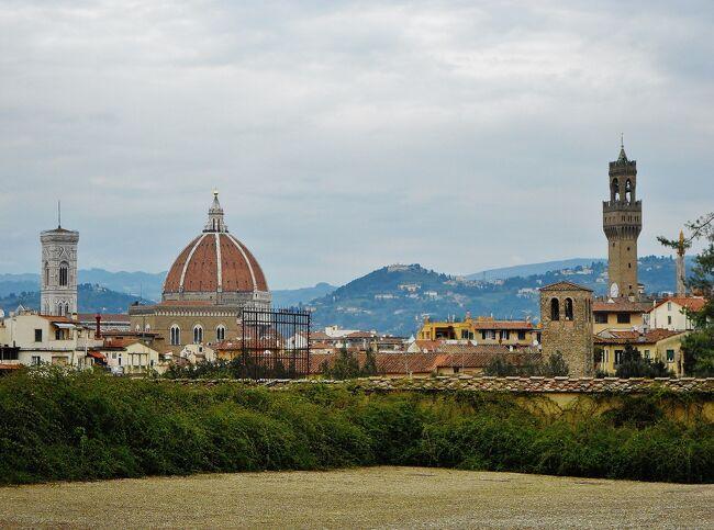 定年の記念として、妻とともにイタリア(ローマ、フィレンツェ、ミラノ)を旅行しました。<br />初めてのイタリアで、不安でしたが、旅行を満喫して無事に帰ってくることが出来ました。<br /><br />■■5日目(2016年3月21日 月曜日)■■■■<br />今日、夕方までフィレンツェ市内観光します。その後、フィレンツェからミラノに電車(Frecciarossa 9540)で移動します。<br /><br />-------------------------------------------------------------<br /><br />【今回のスケジュール】<br />・1日目(3月17日(木曜日))<br /> 羽田空港→ミュンヘン空港 移動(ANA217 )<br /> ミュンヘン空港→フィウミチーノ空港 移動(ANA NH6095)<br /> フィウミチーノ空港→ローマ・テルミニ駅 移動(レオナルド・エックスプレス)<br /> ≪ローマ泊≫<br />http://4travel.jp/travelogue/11105898<br /><br />・2日目(3月18日(金曜日))<br /> ローマ市内観光<br /> ≪ローマ泊≫<br />http://4travel.jp/travelogue/11114846<br /><br />・3日目(3月19日(土曜日))<br /> ローマ・テルミニ駅 → フィレンツェ中央駅 移動(電車 Frecciarossa9414)<br /> フィレンツェ市内観光<br /> ≪フィレンツェ泊≫<br />http://4travel.jp/travelogue/11114979<br /><br />・4日目(3月20日(日曜日))<br /> フィレンツェ市内観光<br /> ≪フィレンツェ泊≫<br />http://4travel.jp/travelogue/11115017<br /><br />・5日目(3月21日(月曜日))<br /> フィレンツェ市内観光<br /> フィレンツェ中央駅 → ミラノ中央駅 移動(電車 Frecciarossa9540)<br /> ≪ミラノ泊≫<br />http://4travel.jp/travelogue/11115888<br />http://4travel.jp/travelogue/11115023<br /><br />・6日目(3月22日(火曜日))<br /> ミラノ市内観光<br /> ミラノ空港 → ミュンヘン空港 移動(ANA NH6054)<br /> ミュンヘン空港 → 羽田空港 移動(ANA NH218)<br />http://4travel.jp/travelogue/11115025