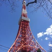 桜見れるか運だめしの一時帰国②東京へ遊びに