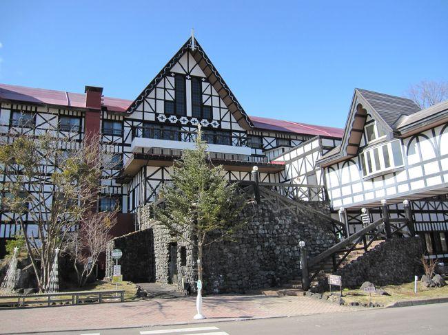 赤ちゃん関連のサイトのプレゼントでホテルの宿泊券が当たったので、旅行に行ってきました。<br />まだ雪が残っていて寒かったけれど、雪景色がきれいでした。<br />ホテルではバイキングや温泉を楽しみました。<br />おもちゃ王国のチケットもついていたので翌日行ってみました。<br />お得で楽しい旅行でした。