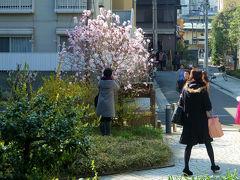 楽しい仲間の案内で 神楽坂散歩