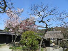 北鎌倉のお寺巡り、3時間