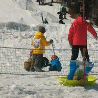 2015年シーズン初スキーは、ゲレンデスキーデビューを目指す!in鹿沢高原
