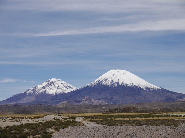 ボリビアを回り、これからペルーに入る予定であった。しかし、自分は心臓の持病(狭心症と不整脈)がある。高度3,000mを超えてきて、そこで泊まると夜、胸が苦しくなり眠れないことが起きる。最初の日だけで、2日目からは慣れて大丈夫だのだが。ウユニ高地に入った時、ラパスに入った時と2度起きた。体が慣れてきて起きないのが普通なのだが、これはどうも心臓にだいぶ無理があるようだ。万が一があってからでは取返しがつかないと思い、ペルー行きを中止し、チリ北部に入ることにした(一人旅でもある)。<br /><br />ラパスからチリ北部・アリカまで約8時間のバスの旅。国際バスが各社から出ている。早朝5:30AMと12:00PMの辺に出発が固まっている。出国と入国は簡単に済む。ただし、チリ側は道路工事をしていて、片側車線通行規制があるため、途中でかなり待たされる。<br /><br />アリカは港街で、ボリビアへの貨物の出し入れの港として栄えている。<br />アリカの見どころは2つ。<br /><br />1)ラウカ国立公園(ボリビアとの国境付近の高地)<br />1日ツアーで行くことになる。料金はCLP25,000.朝7:30ごろ出て、夜遅く(10:00PMであった)の帰着となる。チリ側で道路工事のため、片側車線規制をしているので、かなり待たされたのが原因。<br /><br />リャマ、クーニャ、野ウサギ、フラミンゴなどの動物、砂漠・高地の景観、高地の湖などを見て回る。平地から一気に3000m台に登るのと道が悪いので揺れるのとで、気分が悪くなることが多いので、注意して下さい。<br /><br />2)アサバ渓谷と地上絵<br />こちらはアリカの近郊で、ツアーは出ていない。ホテル側でタクシーのチャター(2時間程度)をアレンジしてくれる(料金はCLP7000)。帰りは乗り合いタクシー(CLP1000)で帰ってくる。午前中に出て、サンミゲルという場所で昼食を取り、帰るのが良いと思う。<br />なお、スペイン語のみなので、そのつもりで。昼食はPollo(鳥肉)が<br />無難かも。それとアサバ峡谷はフルーツの生産地なので、マンゴージュースを頼むと良い。大きな入れ物で持ってきてくれる(ビールのピッチャー)。<br /><br />3)港からのボート<br />港付近を回る観光船でCLP2000.アザラシ、ペリカンなどが見れる。<br /><br />実質2日あれば十分と思う。