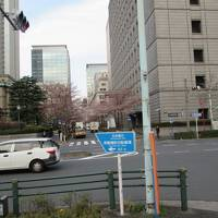 東京は思った以上に広かった