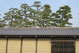 2016春、京都の桜巡り(9/13):3月30日(9):京都御所と御苑(4):大島桜、御所の築地塀、開花前の車返桜、シモクレン