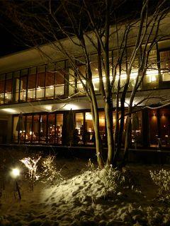 春の優雅な伊豆と河口湖 愛犬一緒の旅♪ Vol16(第3日目夜) ☆河口湖:「レジーナリゾート富士」 愛犬と一緒に夜の美しい雪景色♪