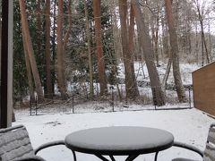 春の優雅な伊豆と河口湖 愛犬一緒の旅♪ Vol17(第4日目午前) ☆河口湖:「レジーナリゾート富士」 朝の雪を眺めながら朝食♪