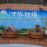 2016年春:家族で館山旅行(1泊2日)②