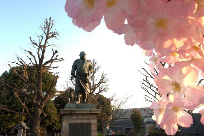 江の島〜鎌倉〜中華街〜みなとみらい〜上野〜新宿。<br /><br />街歩き、観光、名所、史跡、大仏、寺院、食べ歩き、科学、花見、公園、お笑い。<br /><br />2016年、東京都心での桜の開花宣言は3月21日に発表された。<br /><br />旅行期間中に桜が満開となることを見込んで、お花見メインの【桜巡りin東京】の旅行を計画してみましたが、、、<br /><br />しかし、その後は花冷えが続きまだ1〜2分咲きとの事のようでして^_^;<br />大幅に行先を変更しての神奈川・東京旅行、2泊3日。