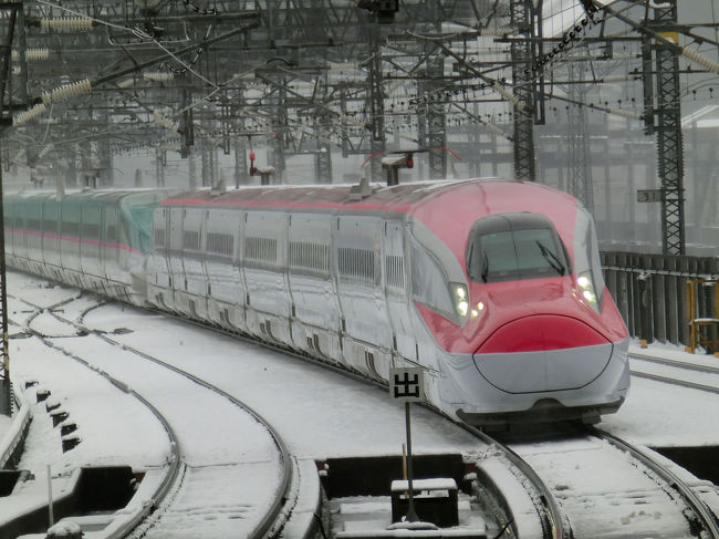関東地方大雪で公共交通機関が大乱れ。<br />電車がまともに動かない中宮城に出張でした。<br />出張なので観光は全くなしです。