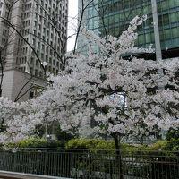 たわいない大阪キタ街探索