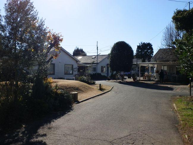 埼玉県入間市。最寄りは西武池袋線の「入間市」駅。「けやき通り」を真っ直ぐ歩くこと約20分。「彩の森入間公園」の出入口で変則交差点で国道463号に出合います。国道463号沿いを少し進むと三角屋根のダブルゲーブルハウスで白い横張りの板壁の建物が見えます。その板壁に青の背景に白字で「JOHNSON TOWN」という看板が掛かっています。<br /><br /> 一歩入ると、そこには古き良きアメリカの街並みがあります。アメリカンハウスが建ち並ぶ白い街【JOHNSON TOWN(ジョンソンタウン)】。そこには古き良きアメリカの街並みが広がっています。「彩の森入間公園」と「富士見公園」という二つの大きな公園に隣接し、「米軍ハウス」と呼ばれる平屋のアメリカン古民家と、「平成ハウス」と呼ばれる現代的低層住宅が、樹々の間に点在して建っている自然豊かな住宅地です。<br /><br /> 「JOHNSON TOWN」内は住居としてだけではなく、工房として利用したい、カフェをはじめたい、レストランをはじめたい、雑貨屋さんをオープンしたいなど、使い方は自由だそうです(住居エリアは除きます)。アメリカナイズされた色々な店を覗くことも「JOHNSON TOWN」の楽しみ方の一つです。<br />