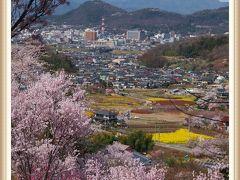 福島の桃源郷 百花繚乱の花見山