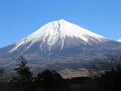 富士五湖(山中湖除く)を巡り、富士を望む