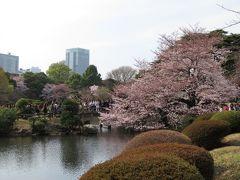 東京代々木・新宿のさくら・・新宿御苑をめぐります。
