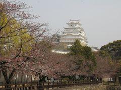 201603-01_姫路城、姫路動物園と岡山後楽園 - SAKURA in Himeji and Korakuen (Hyogo/Okayama)