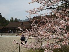 201603-02_出雲國神仏霊場めぐり-その1(第一番~第四番)- Pilgrimage to the 20 temples/shrines in Izumo (Shimane) -1