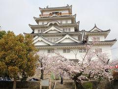 201603-05_福山・尾道・庄原の桜を愛でる旅 - SAKURA in Fukuyama/Onomichi/Shobara (Hiroshima)