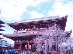 浅草寺で春のお参りです