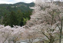 2016春、奈良の桜巡り(12/13):4月3日(12):吉野山(8):東南院、多宝塔、韋駄天山、金峯山寺・仁王門、弘願寺