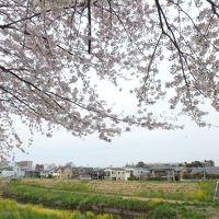 海と納豆(1泊2日) Vol.4