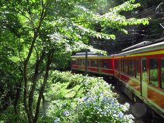 ふるさと割りを利用して箱根旅行