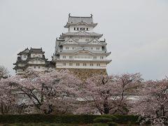 グランドオープン2年後の姫路城。少しは黒くなったかな。