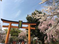 京の週末 ~京都御苑でお花見、桜舞い散る平野神社&建勲神社、超レトロな船岡温泉でひとっ風呂浴びる~