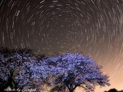 星空の下、判官塚古墳に咲く孤高の桜