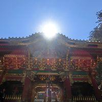 宮城/山形/福島/栃木 南東北たび(3)日光