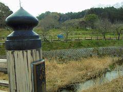 桜には早かった奈良 3 ちょっと昔を思い出して。。。