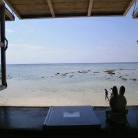 南国の海を見ながらティーブレイクを! JAL国内線ファーストクラスに乗って日帰りで行く、沖縄の海が見られる喫茶店巡り