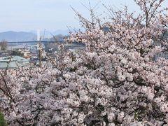 尾道の春景 2016