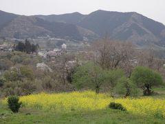 金剛山~鉢岡山~日蓮山~宝山