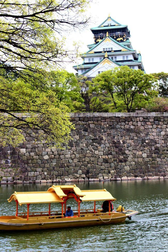 前から一度は行きたかった大阪造幣局の桜の通り抜け、でも混みそうなので躊躇してました。<br />主人が大阪初めてなので、思い切って行ってみました。<br /><br />噂に聞いていたけど、凄い人と桜の種類の多さに驚きました。普段あまり見ない珍しい桜を堪能しました。<br />ついでに大阪城も見学、天守閣から大阪市街の景色がきれいに見えました。<br /><br />夜は道頓堀に行きましたが、アジア系の外国人の多いこと、ネオンの派手さにも驚きました。<br />ホテルの部屋から見た夜景もきれいでした。